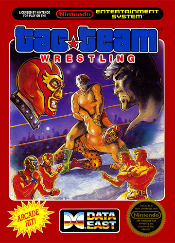 Tag Team Wrestling Nintendo NES cover artwork