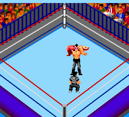 Fire Pro Wrestling - Combination Tag ingame screenshot