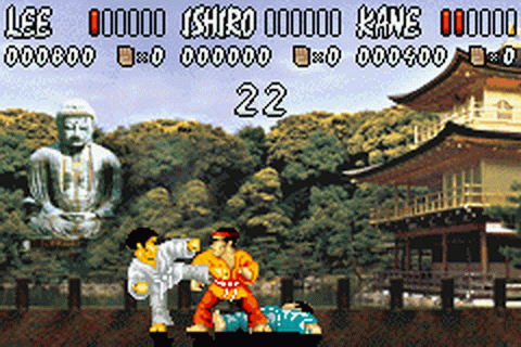 International Karate Advanced ingame screenshot