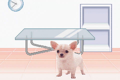 Pocket Dogs ingame screenshot