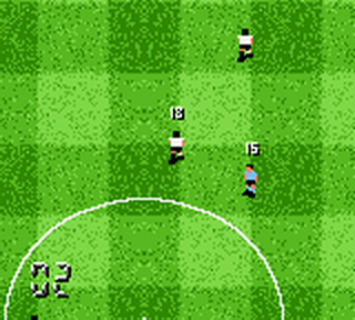 F.A. Premier League Stars 2001, The ingame screenshot