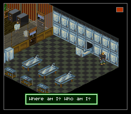 Shadowrun ingame screenshot