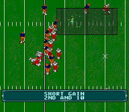 NCAA Football ingame screenshot
