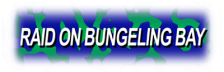 Raid on Bungeling Bay logo