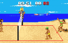 Malibu Bikini Volleyball ingame screenshot