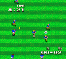 Formation Soccer - Human Cup '90 ingame screenshot