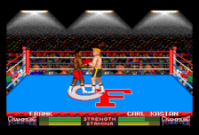 Champions Forever Boxing ingame screenshot