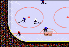 TV Sports Hockey ingame screenshot
