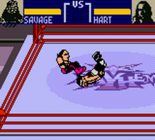 WCW Mayhem ingame screenshot