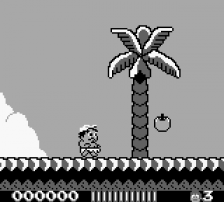 Adventure Island ingame screenshot