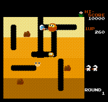 Dig Dug ingame screenshot