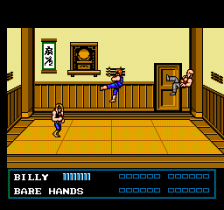 Double Dragon III - The Sacred Stones ingame screenshot