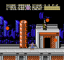 Ninja Gaiden II - The Dark Sword of Chaos ingame screenshot