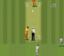 Super International Cricket ingame screenshot