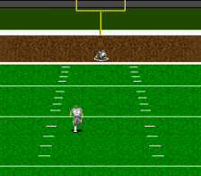 ESPN Sunday Night NFL ingame screenshot