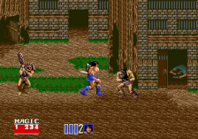 Golden Axe II ingame screenshot