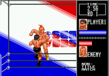 Wrestle War ingame screenshot