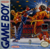 Best of the Best - Championship Karate Nintendo Game Boy cover artwork