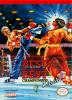Best of the Best - Championship Karate Nintendo NES cover artwork