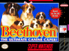 Beethoven's 2nd - The Ultimate Canine Caper ! Nintendo Super NES cover artwork